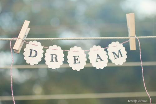 222/365 dream