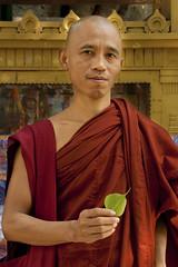 Blessings (L I C H T B I L D E R) Tags: india blessings praying devotion meditation spirituality stillness bodhgaya mahabodhitempel