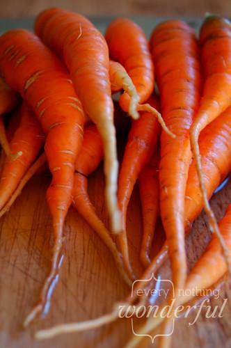 CarrotsGarden