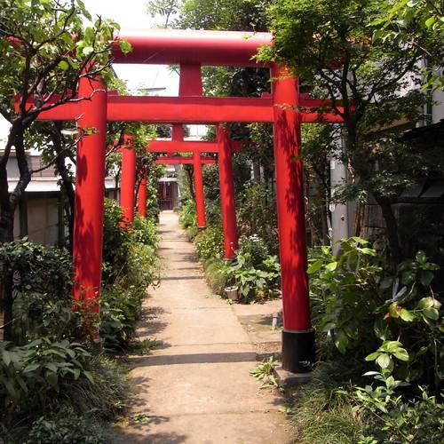 Fukuda Inari 01