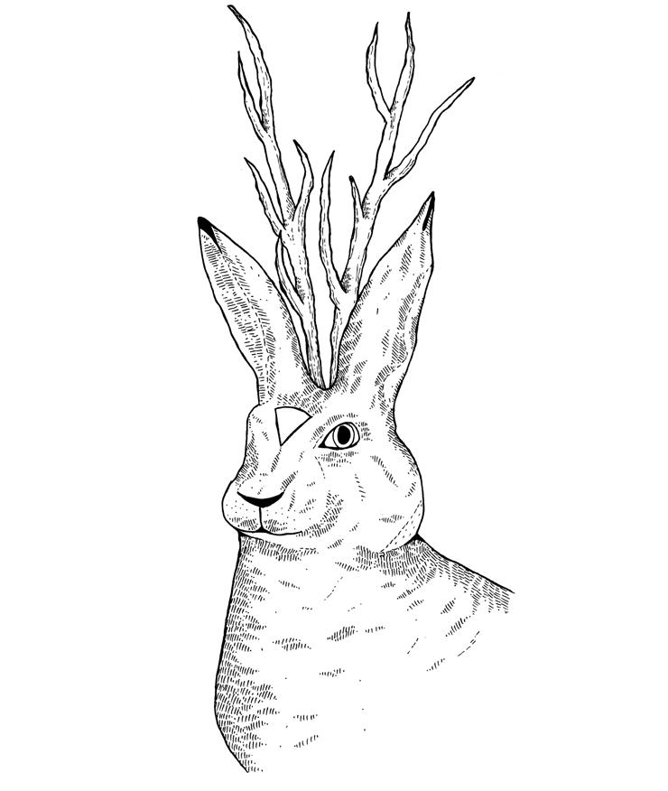 next tote bag print - hare