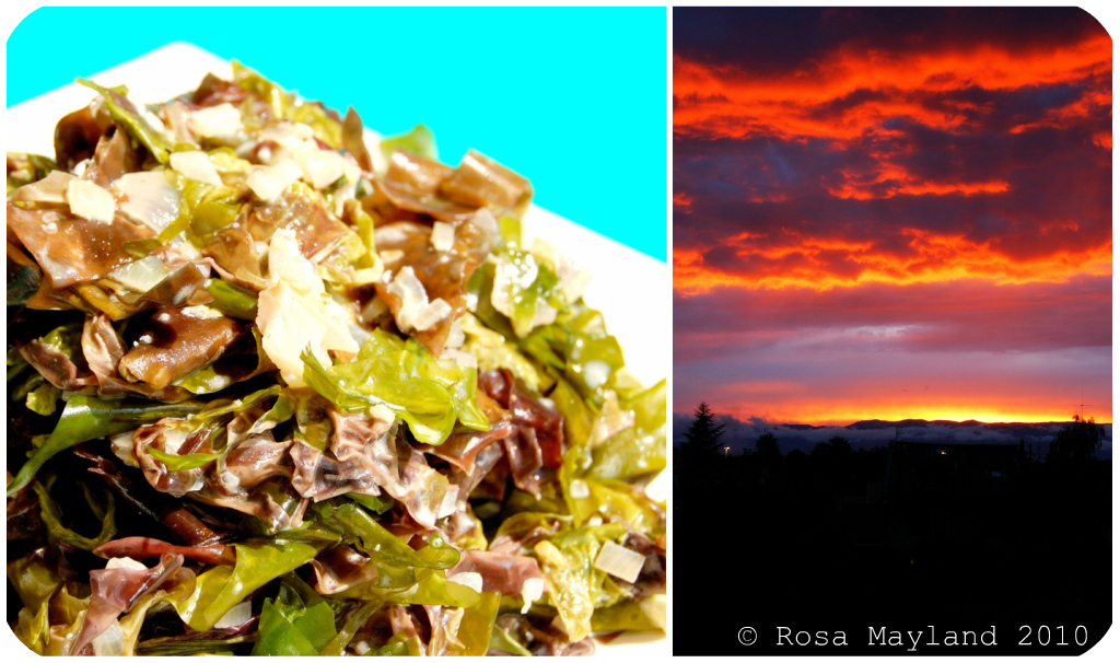 Seaweed Picnik collage 5 bis