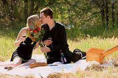 Romantic Picnic Series