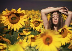 317/365 Be Sure To Wear.... (sosij) Tags: summer england selfportrait sunshine yellow canon demeter sunflowers fields 5d wooooo flowerpower manfrotto summeroflove cadwellfarm iwillmakeituptohim maybestripdownhislegsandgivethemarubdown