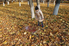 a Find (odeku03(Children and others)) Tags: park autumn girl childhood yellow kids children leaf day child littlegirl leafs discovery find gettyimagesrussiaq2