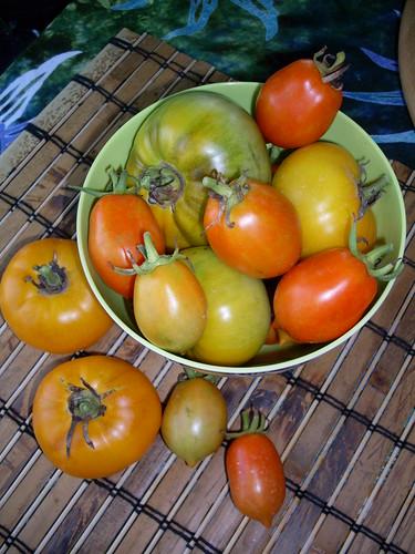 Tomatos from my garden