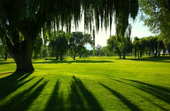 Golf Course in Penticton, British Columbia (kcezary) Tags: travel summer wallpaper vacation canada tourism canon landscape outdoors rboles britishcolumbia paisaje golfcourse paysage landschaft penticton   canoneflens canon24mmf28 canonprimelens canon5dmkii mylensdb