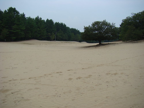 Desert of Maine