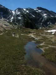 robins lakes trico 145