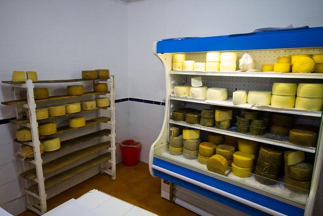 Manchego Cheese Artisan - Quesos Cabrera - Manzanares - Ciudad Real Spain-0729.jpg