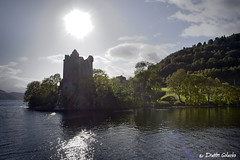 Urquhart Castle (Munsch_DG) Tags: wood blue sky sun reflection tree green castle water clouds forest reflections ruins bright structure loch stronghold urquhartcastle lochness medival inverness fortwilliam ness urquhart schotland drumnadrochit lensflares strongholds