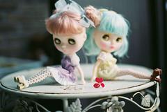 pots dots dolls