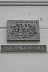 Darwin (Tim Green aka atoach) Tags: beagle cornwall darwin falmouth