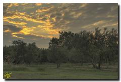 Exquisite Sunrise ... 7xP HDR (Emil9497 Photography & Art) Tags: sunrise hellas greece hdr kavala d90 nikond90 concordians flickrestrellas kariani 7xphdr