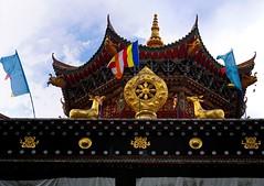 Dorje Drak Gonpa, Tibet (reurinkjan) Tags: prayerflag lungta    janreurink tibetanplateaubtogang kham buddhism 2009 tibet dardocounty prayerflagsonstaff prayerwheels womanskyesdman prostratingphyagtshalbzhinpa dartsedo dorjedrakgonpa pilgrim