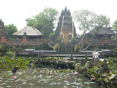 Bali-Ubud (120)
