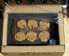 Solar Cookies