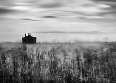 deserted house (nicola tramarin) Tags: longexposure bw house casa weed italia delta erba biancoenero mosso veneto rovigo abbandono lungaesposizione scardovari polesine nicolatramarin