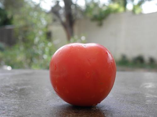Our tomato Marinara