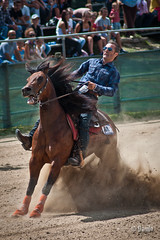 Sliding stop 1 (_DaZ_) Tags: horses horse western americana cavalli cavallo monta reining slidingstop staffoli