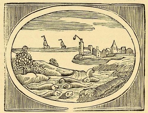 Piscis Fluvialis et Mare