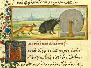 Vulpes et Aper
