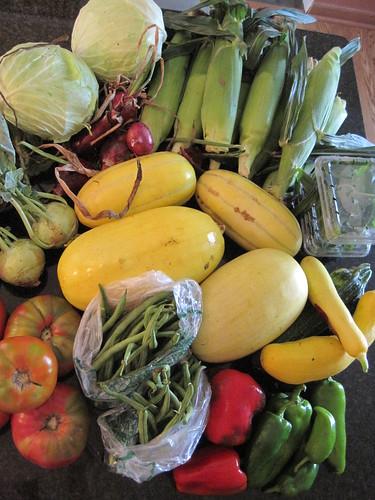 Maple Creek Farm Share ~ Week 11