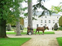 Chteau et Parc de Sceaux (dimitri salon) Tags: france castle cheval europe iledefrance chteau parc colbert sceaux parcdesceaux hautsdeseine andrlenotre jeanbaptistecolbert castleofsceaux