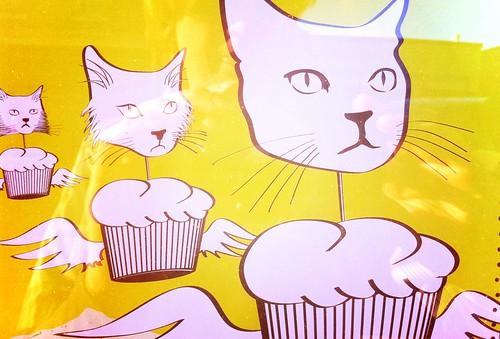 Cupcake cats