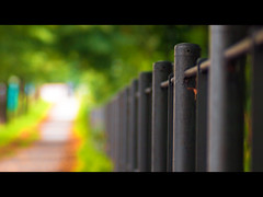 fence friday in moabit (~janne) Tags: leica berlin fence olympus friday zaun janne freitag janusz elmaritr e520 ziob