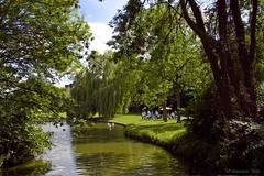 H.. dat ziet er gezellig uit.... (Dimormar!) Tags: trees green water bomen rotterdam groen terras zuiderpark zuiderparkmeetup meetup21082010 meetuprotterdam21082010