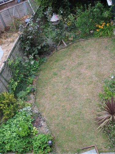 Upper lawn 01 Aug 2010