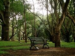 Lalbagh Botanical Gardens, Bangalore