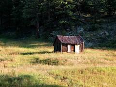 Shack Ruined (saxonfenken) Tags: trees green abandoned field grass colorado shack ruined 393 gamewinner pregamewinner day1usae30 393house