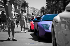 2 Bulls Sleeping (Steven Pham | stevenphamphoto.com) Tags: pink france color candy flat bright merci cannes 4 lp colored lamborghini sv matte murcilago 670 lambo cotten brightly 6704 purble superveloce