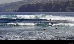 "Hora punta en las olas .... (Tenisca ""Alexis Martn"") Tags: mar agua surf h2o tenerife lamar plato olas surfistas elmar puertodelacruz ola martn maritimo aguadulce martima maresa tenisca martinrod saladamarinomarinarompienteseasealandwaterhttpalexismartinfotosblogspotcomalexismartinfotosblogspotcomteniscaalexis"