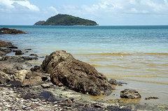 Washed up Coral Spawn at Cape Kimberley Beach in the Daintree National Park (emblatame (Ron)) Tags: beach island barrier daintree coralspawning capekimberley coralseagreat reefqueenslandaustraliasnapper