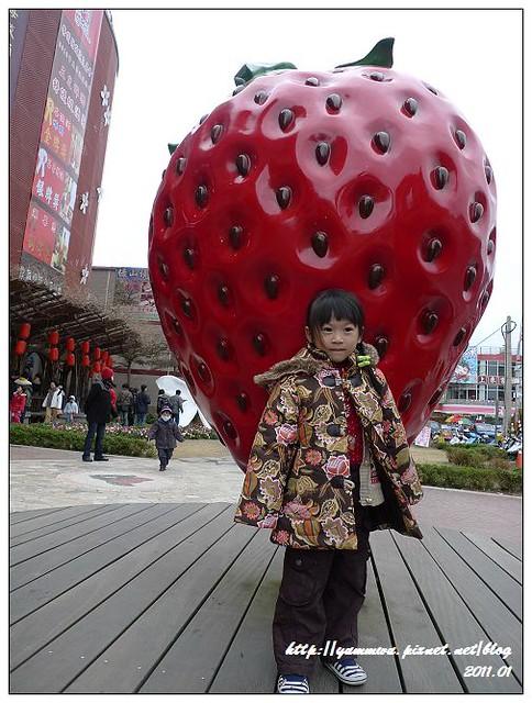 花間集&草莓文化館 (26)