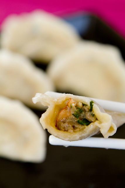 bitten dumpling 2