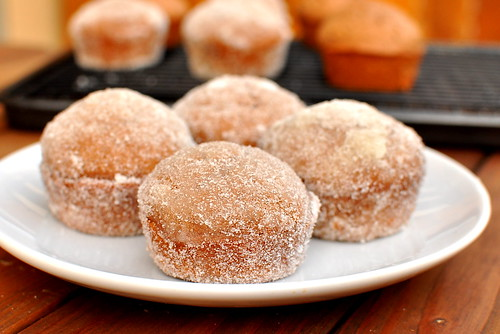 Chocolate Spice Donut Muffins