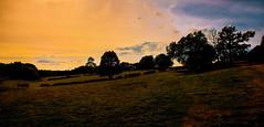 Landscape in England. (ost_jean) Tags: landscape england nikon d5200 tamron sp af 1750mm f28 xr di ii vc ld aspherical if b005n ostjean