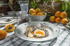 IMG_3423b (milankatkin) Tags: apricot food foodphotography foodphotographer sun sunshine restaurant zylinder outside sweet