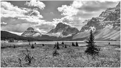 Rockies (-Visavis-) Tags: canada rockies alberta lake mountains bw clouds fujix100 finepixx100 35mm