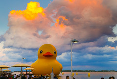 Dramatic clouds over the bathtub... (synestheticstrings) Tags: redpathwaterfrontfestival 2017 canada150 toronto waterfront clouds sunset evening dramatic colour htopark htobeach rubberduck ducky duckie rubberducky worldslargestrubberduck lakeontario lake ontario culture festival ontario150 canadaday harbour harbourfront orange blue yellow duck rubber longweekend