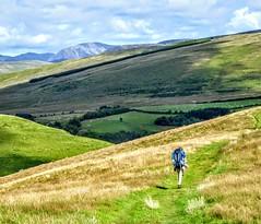 COAST TO COAST WALK 2015 (pajacksonartist) Tags: wainwright wainwrights coasttocoast coast hills nannycatch valley lake district national park lakedistrict lakeland landscape cumbria walker walking hiker hike hiking footpath