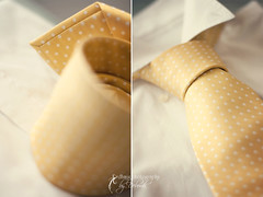 POLKA DOTS tie (dhmig) Tags: yellow 50mm nikon diptych bokeh details tie nikond50 polkadots pois dhmig dhmigphotography