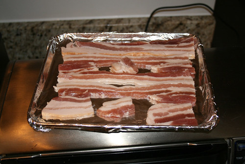 Oven Toaster Can You Cook Bacon In A Toaster Oven