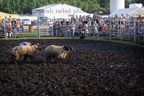 42 . sandburr rodeo . trekfest in riverside .