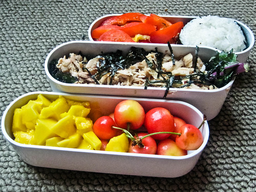 6-29-10 Asian Tuna Salad & Onigiri