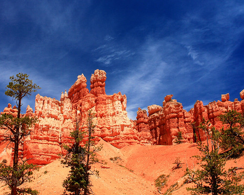 8x10 Bryce Canyon IMG_9537